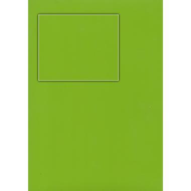 Плівка ПВХ Зелене яблуко глянець